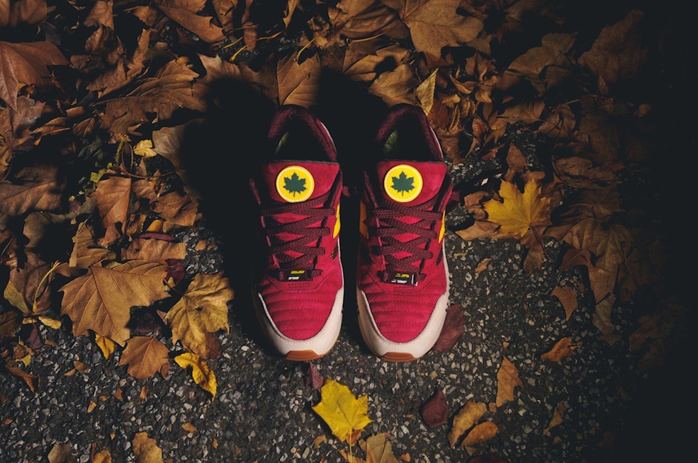 ronnie-fieg-new-balance-530-central-park-2
